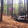 charlottesville forestry mulching land clearing